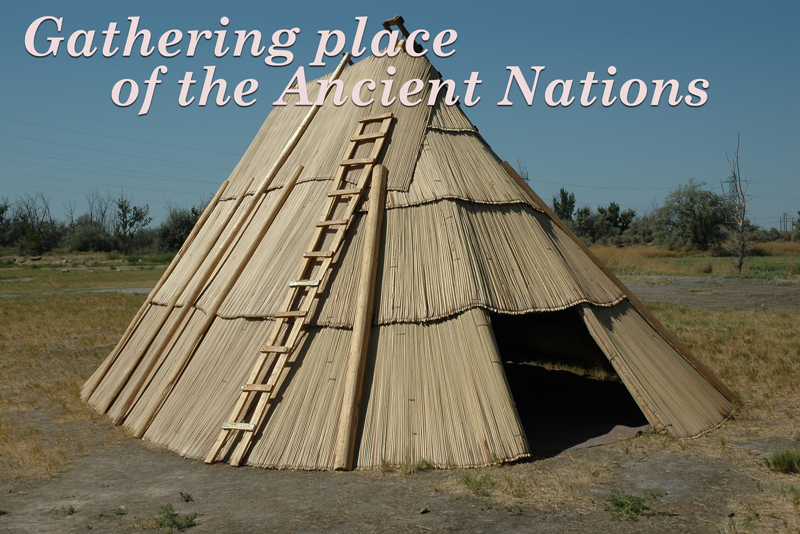 Shelter made from tule reed mats